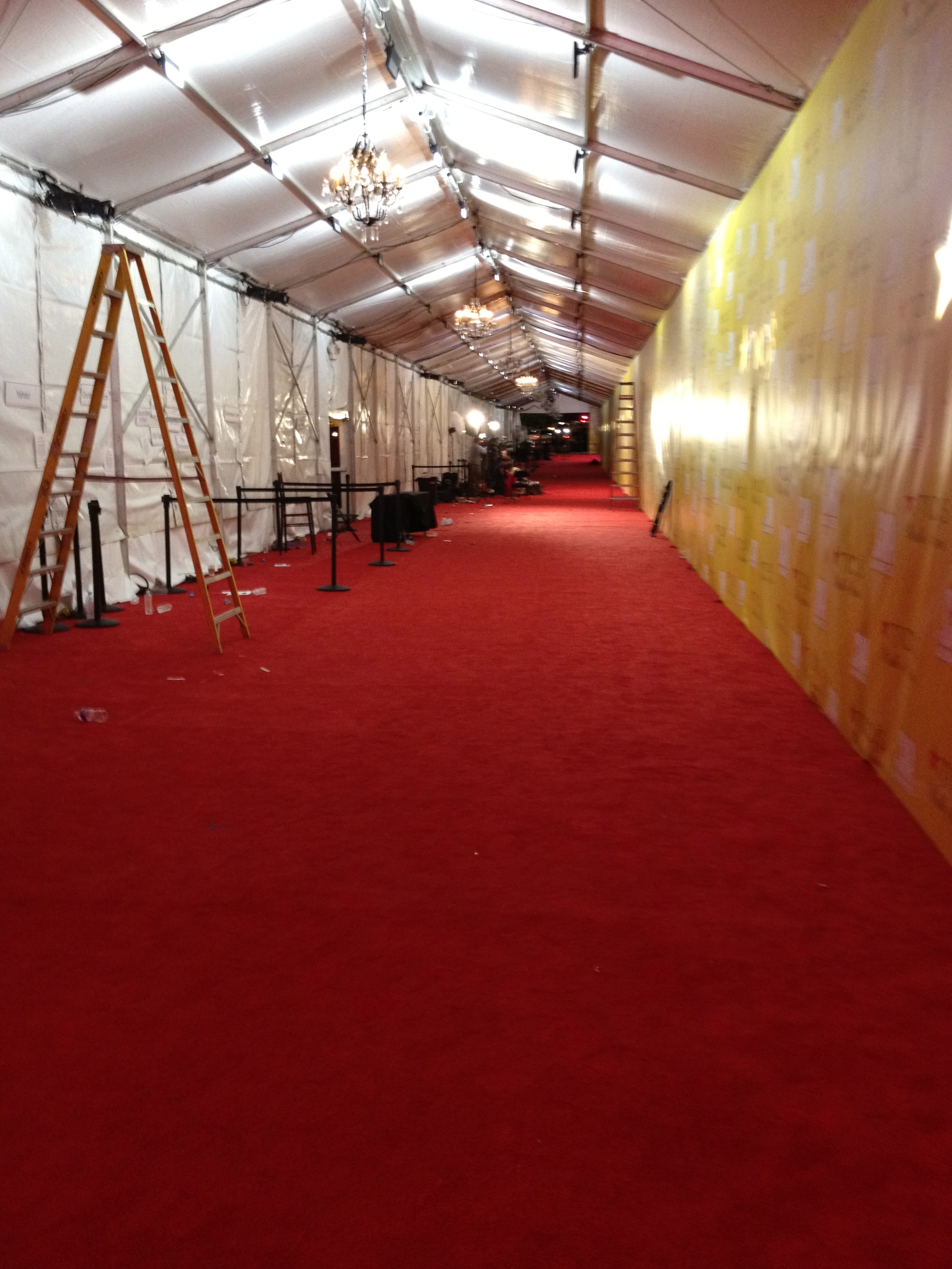 How To Be A Red Carpet Anybody Cowboys And Crossbones