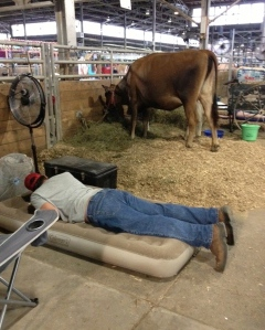 This dude's in trouble because it's only day one of the fair.