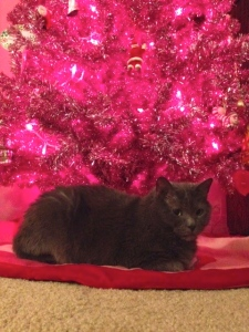 Guarding for bad photo ornaments.