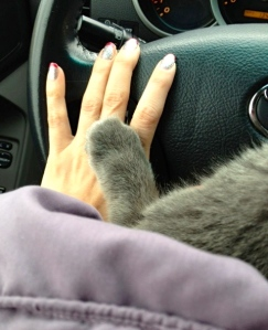 Helping paw.