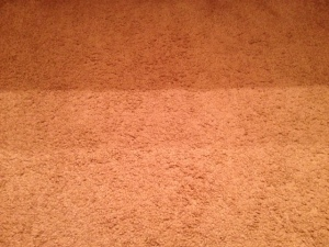 Little. Clear. Carpet