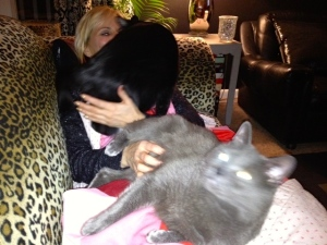 Pussy love. Cat fight.