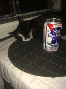 Pussy passed out with PBR. So proud.
