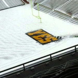 Hawks don't care about nine inches of snow.